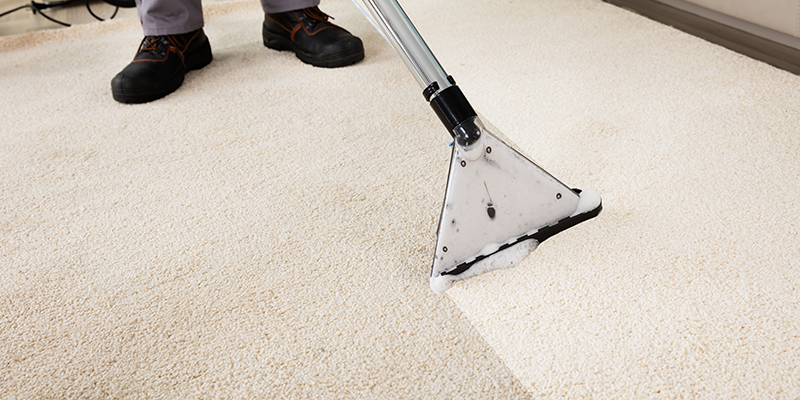 image of carpet getting cleaning